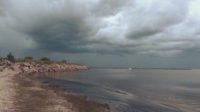 Golfo no cais no temporal de vinda vídeos de arquivo