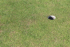 golfowa trawy zieleni dziura Obrazy Stock