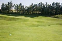 golfowa zieleń Obraz Stock