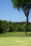 golfowa zieleń Zdjęcia Stock