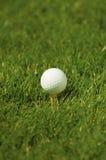 golfowy trójnik obraz stock