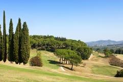 Golfplatz stockbild