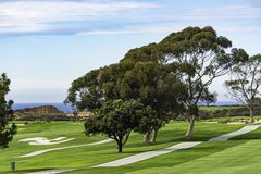 Golfplatz bei Torrey Pines La Jolla California USA nahe San Diego Lizenzfreie Stockfotografie