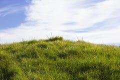 Golfplatz in Belek Grünes Gras auf dem Feld Stockfotografie