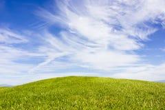 Golfplatz in Belek Grünes Gras auf dem Feld Blauer Himmel, sonnig Stockbild