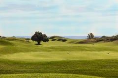 Golfplatz in Belek Grünes Gras auf einem Feld Blauer Himmel, sonniges DA Stockfotografie