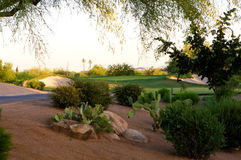 Golfplatz in der Arizona-Wüste Stockfotos