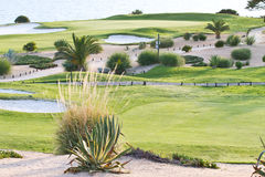 Golfplatz durch den Ozean Stockfoto