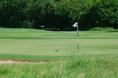 Golfplatz-Grün mit Markierungsfahne Lizenzfreie Stockfotos