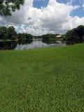 Golfplatz mit Seeansichten Stockbilder