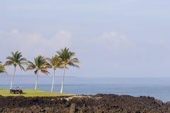 Golfplatz-Pflege Stockbilder