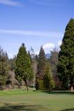 Golfplatz, Stanley Park, Vancouver BC lizenzfreie stockbilder