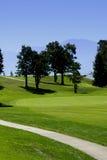 Golfplatz-und Wagen-Pfad Lizenzfreie Stockfotos
