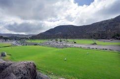 Golfplatzfahrrinne an der tropischen Rücksortierung Lizenzfreies Stockbild