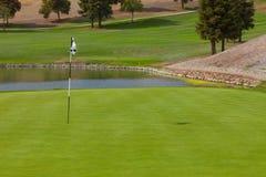 Golfplatzgrün stockbild