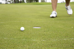 Golfplayer walking to hole. For keep golf ball royalty free stock photo