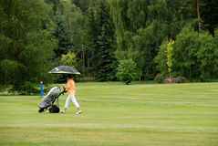 golfregn arkivbilder