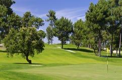 Golfsemesterort Arkivbild