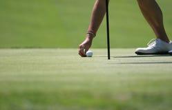 Golfsetzen lizenzfreies stockbild