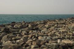 Golfsikt, Dubai fotografering för bildbyråer