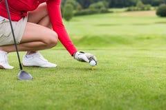 Golfspelare som förlägger bollen på utslagsplats royaltyfri foto