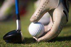 Golfspelare som förlägger bollen på utslagsplats Royaltyfria Bilder