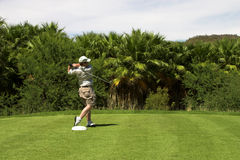 Golfspeler op het T-stuk stock afbeelding