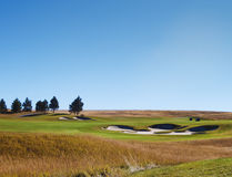 Golfspelers die de bal zoeken Stock Foto