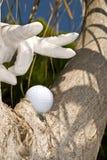 Golfspieler und seine Kugel Stockfotografie
