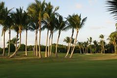 Golfspielplatz Stockfotos