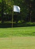 Golfvlag Royalty-vrije Stock Foto's