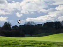Golfvlag Royalty-vrije Stock Afbeelding