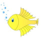 Golg fish Royalty Free Stock Image