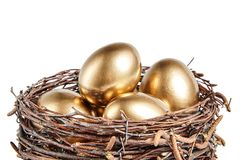Golgen eggs in a basket of birch branches royalty free stock images