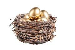 Golgen eggs en una cesta de ramas del abedul imagenes de archivo