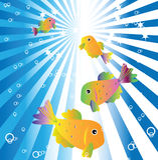 Golgfish im blauen Wasser Stockfotografie