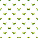 Goliath birdwing butterfly pattern seamless. Goliath birdwing butterfly pattern in cartoon style. Seamless pattern vector illustration Royalty Free Stock Images