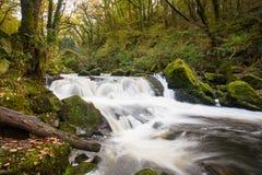 Golitha cai Cornualha Inglaterra Imagens de Stock