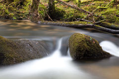 Golitha Falls in Bodmin Moor Stock Photo