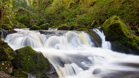 Golitha Falls Cornwall England Stock Photo