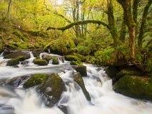 Golitha Falls Cornwall England Stock Image