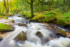 Golitha Falls Cornwall Stock Photos