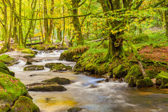 Golitha Falls Cornwall Stock Photo
