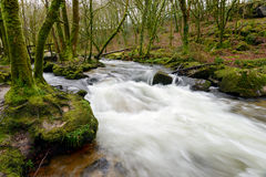 Golitha Falls Royalty Free Stock Photo