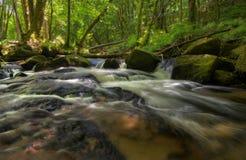 Golitha vattenfall i England fotografering för bildbyråer