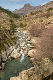 Golo river and Mount Albanu in Corsica Stock Photos