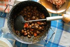 Goloso delle lumache Fotografie Stock Libere da Diritti