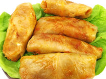 Goloubets - stuffed cabbage roll Stock Photos