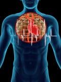 Golpe de corazón humano Foto de archivo libre de regalías