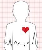 Golpe de corazón humano del vector Fotografía de archivo